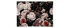 Tappeto di design con motivo a rose 160 x 230 cm GALICA
